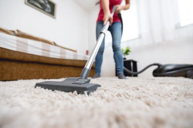 how to kill fleas in carpet