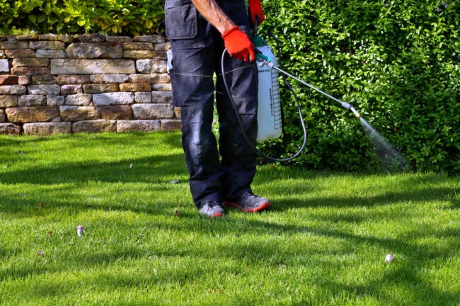 Weed control concept. weed killer series