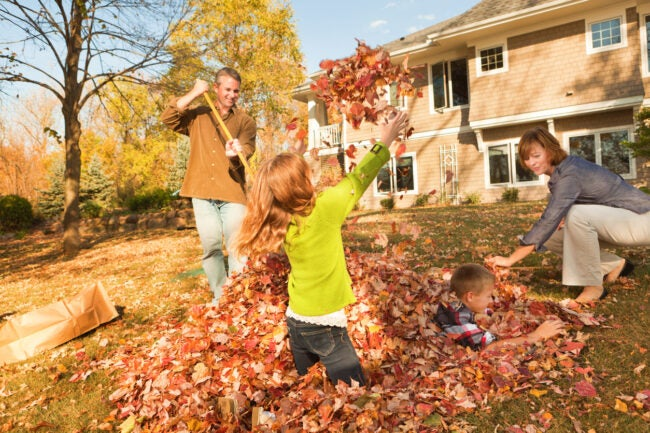 A family raking fall leaves outdoors together, working as a team in their home back yard. Children, a boy and girl, provide assistance, helping parents rake and bag. A residential building, their house, is in the background. The happy group conveys teamwork and togetherness as they complete autumn yard work chores.