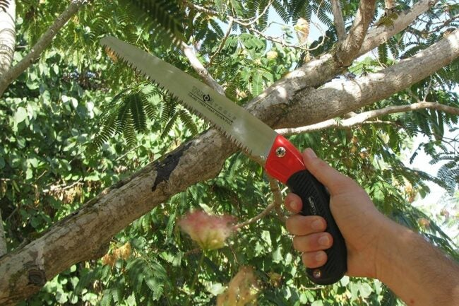 The Best Pruning Saw Option