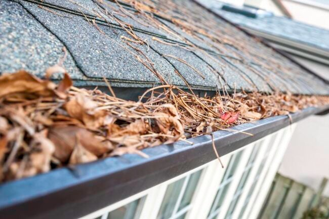 Gutter Cleaning Cost Signs You Need Gutter Cleaning