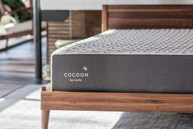 The Best Mattress Brand Option: Cocoon by Sealy
