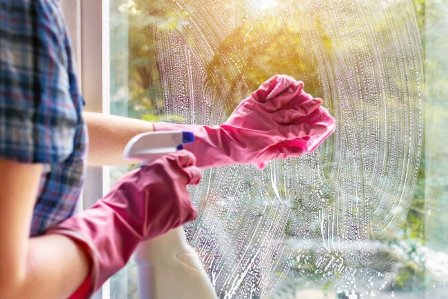 Window Cleaning Cost
