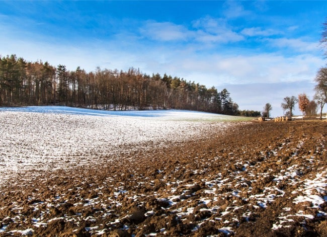 frost line depth