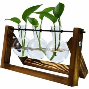 The Best Gifts for Plant Lovers Option: Pomeat Plant Propagation Stations Glass Planter Bulb