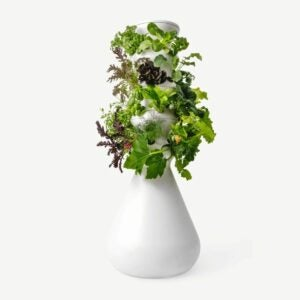 The Best Gifts for Plant Lovers Option: The Farmstand