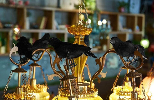 The Best Halloween Decorations Option: ATDAWN Halloween Black Feathered Crows