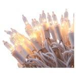 The Best Indoor Christmas Lights Option: LIDORE 100 Count Indoor String Light