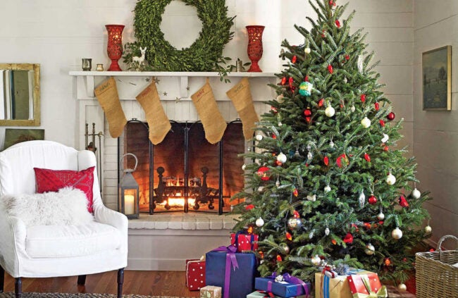 The Best Places to Buy Christmas Trees Option: A Tree to Your Door