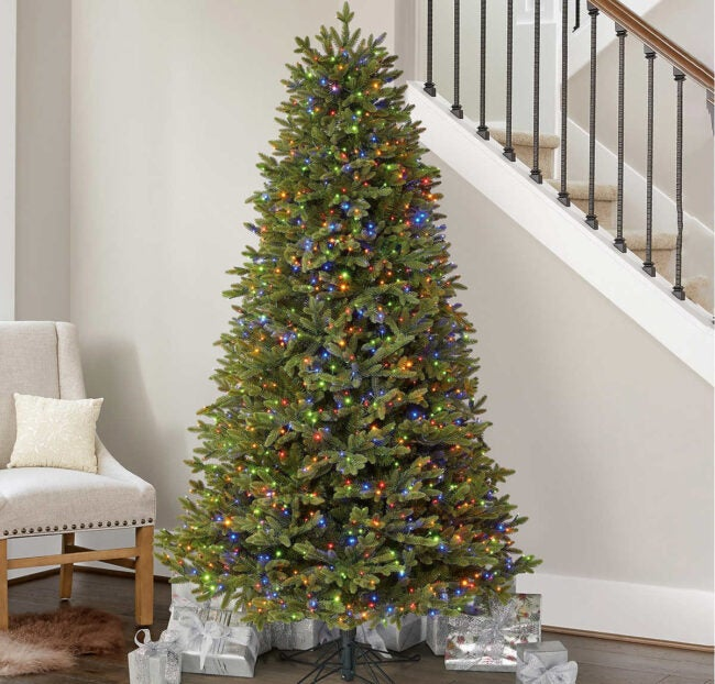The Best Places to Buy Christmas Trees Option: Costco