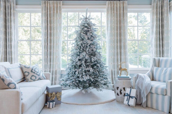 The Best Places to Buy Christmas Trees Option: King of Christmas