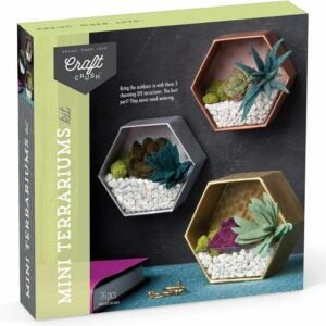 The Best Craft Kits for Adults Option: Craft Crush – Mini Terrariums Craft Kit