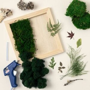 The Best Craft Kits for Adults Option: DIY Preserved Moss Frame Kit