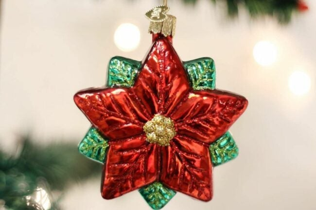The Best Christmas Ornaments Option: Old World Christmas Glass Blown Poinsettia Star