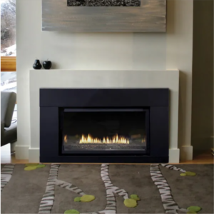 Best Gas Fireplace Inserts Options: Empire Loft Series DVL25