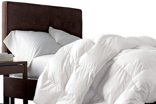 bv-deals-092721-20: Egyptian Bedding Siberian Goose Down Comforter