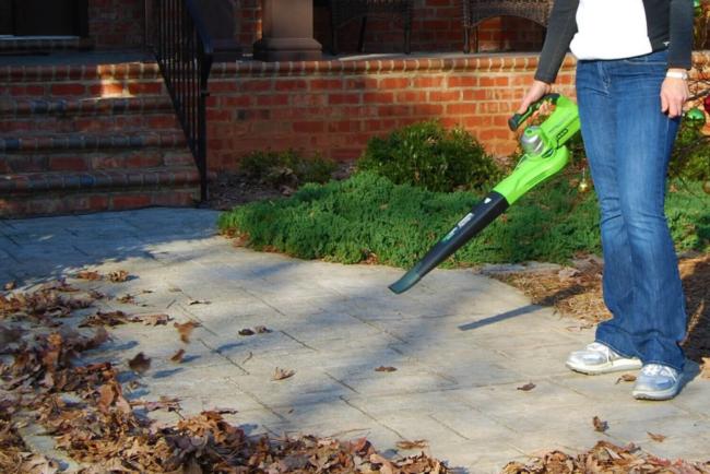 Greenworks Leaf Blower September Deal