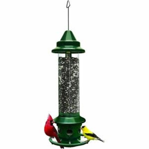 The Best Gifts for New Homeowners Option: Squirrel Buster Plus Squirrel-Proof Bird Feeder