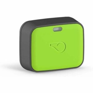 The Best Gifts for New Homeowners Option: Whistle Go Explore Location Tracker for Pets