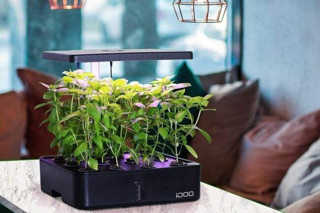 Deals Roundup 10/7 Option: iDOO Hydroponics Growing System