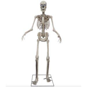 Seasonal Visions International - 8ft Skeleton