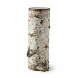 The Best Food Gifts Option: Oyster Mushroom Log Kit