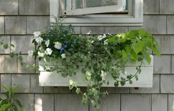 Woodworking Projects - Window Box