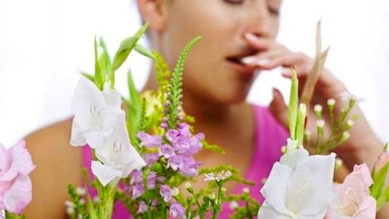 Reduce Allergies and Asthma