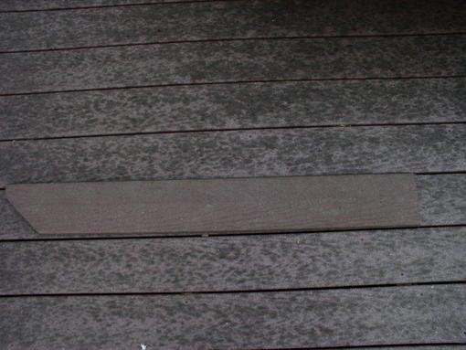 1877 trex deck mold probl
