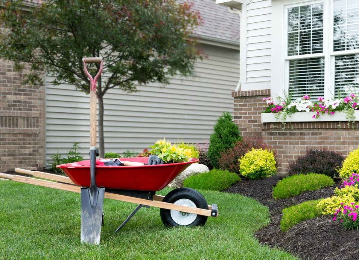 12 Best Tips For Landscaping Around Trees Bob Vila