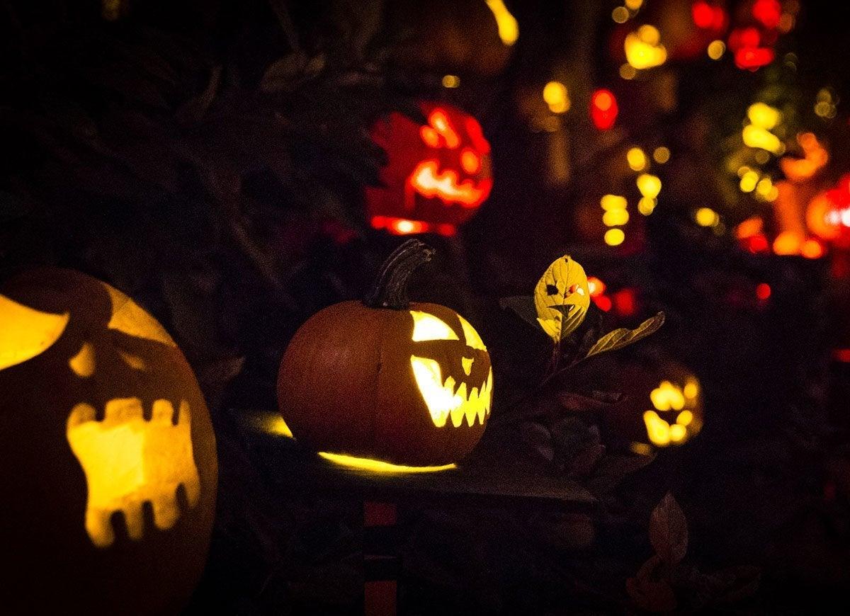 Best Fall Pumpkin Festivals Bob Vila