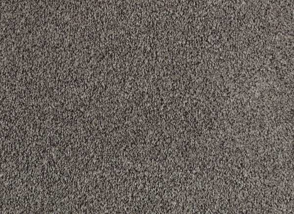 Лучшие цвета ковров: верфь от PetProof