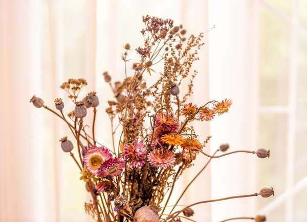 Borax Uses: Drying Flowers