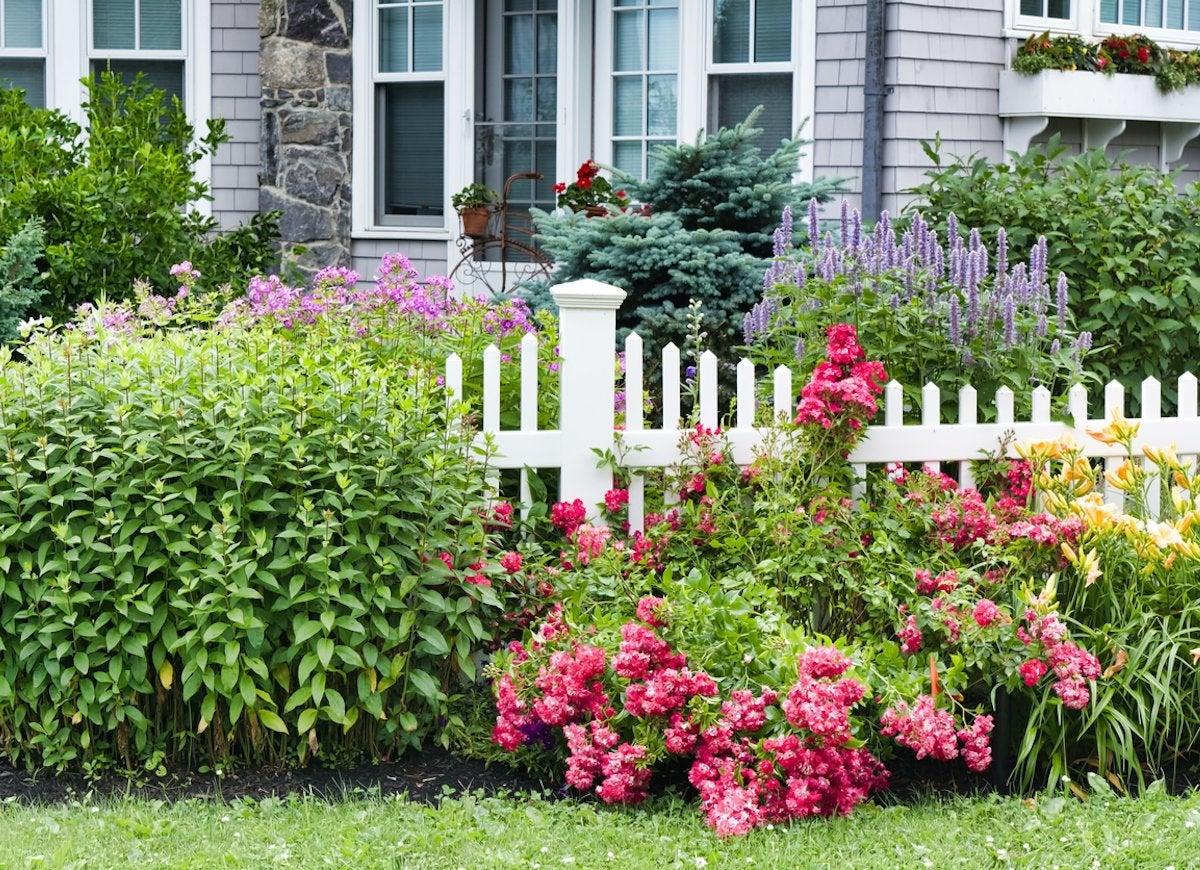 Low Maintenance Landscaping 25 No Effort Landscape Ideas Bob Vila