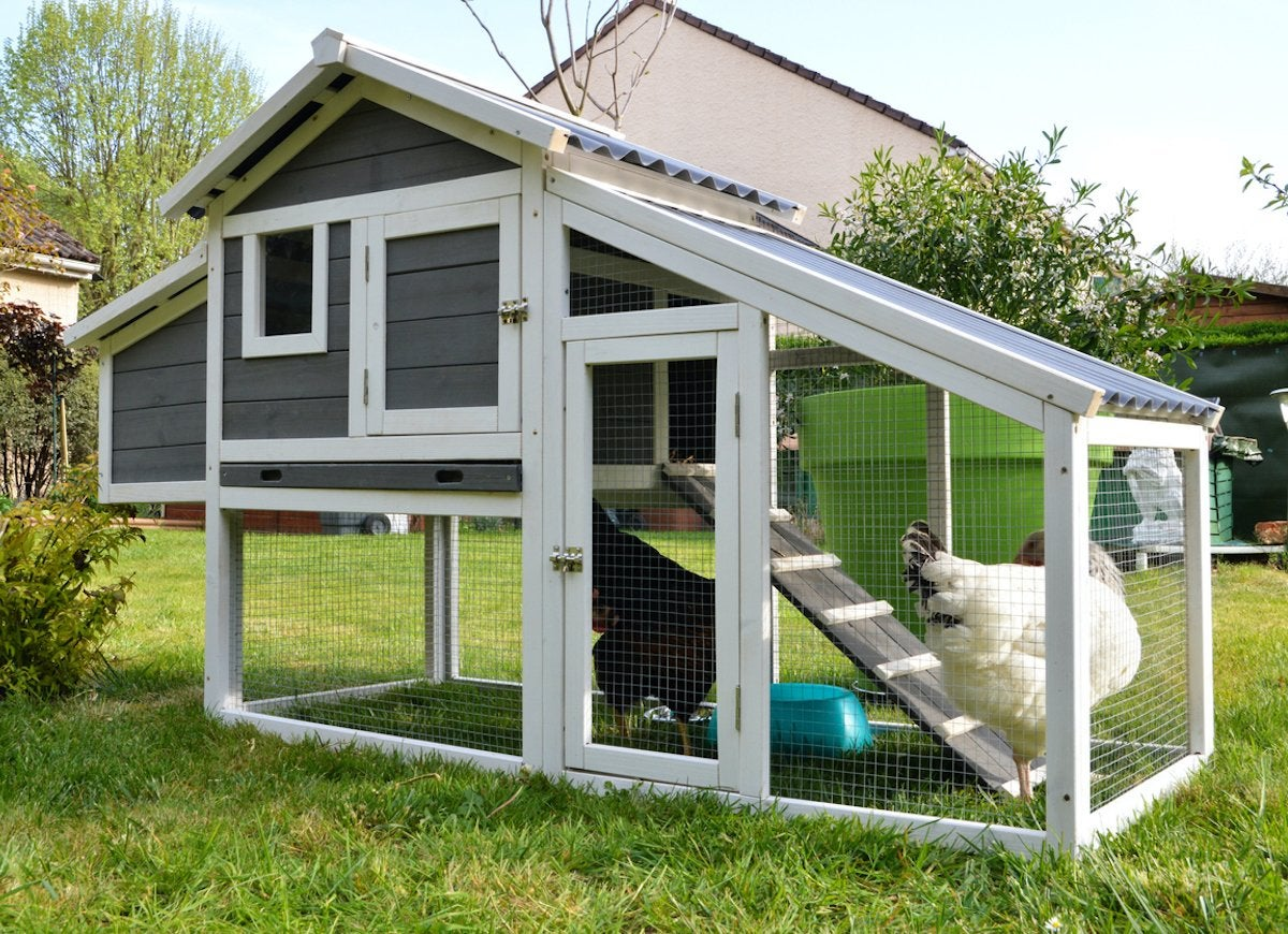 Diy Chicken Coops 20 Inspiring Designs Bob Vila