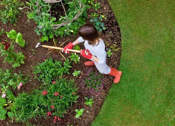 create garden curb appeal