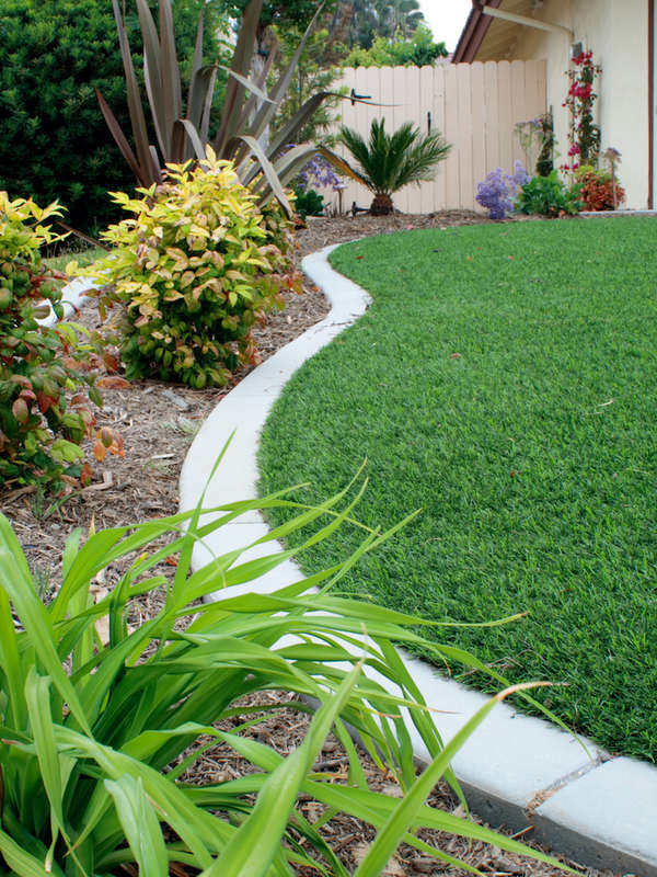 10 Low Cost Solutions For An Ugly Lawn, Better Lawns And Gardens Little Rock