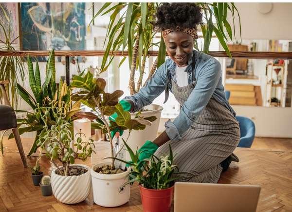 Mujer mirando la computadora y cuidando las plantas
