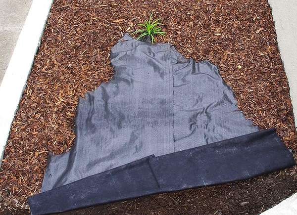 Paisajismo jardín cama elevada de tela