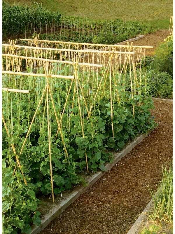 soporte de plantas jardín de cama elevada