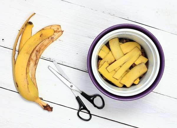 Cáscaras de bananas