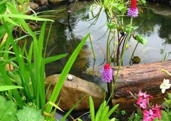 Backyard Ponds 10 Stunning Water Feature Designs Bob Vila
